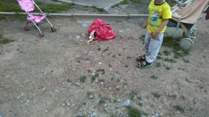 Выпавший пакет упал в паре сантиметров от 2-летнего мальчика, который шел с мамой домой