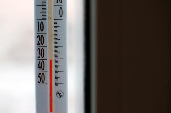Вместо того, чтобы морить клопов ядами, их можно уничтожить вымораживанием (мебели, одежды или даже всей квартиры).