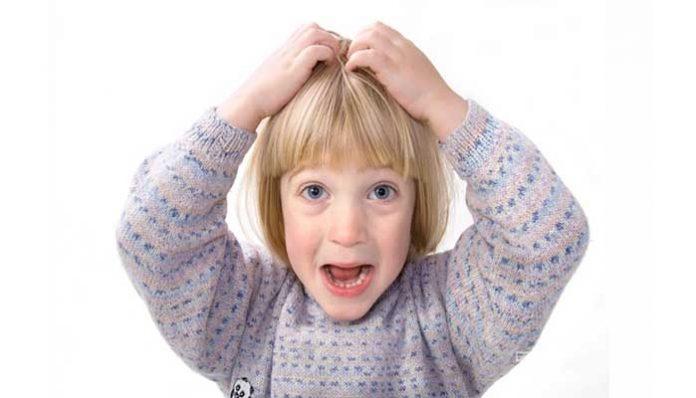 Подкожные вши, на голове и теле, симптомы, лечение